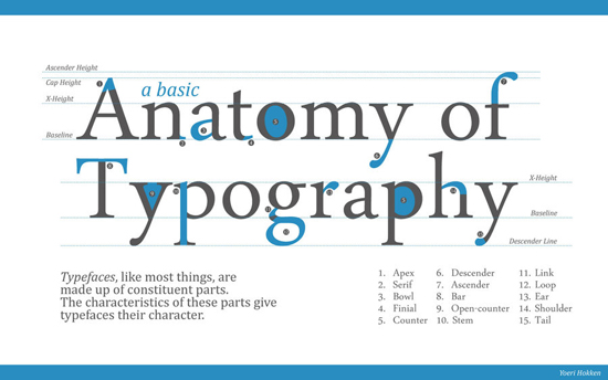 anatomy_of_typography1